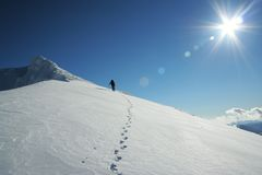 Free Footsteps Under The Sun Stock Images - 854164