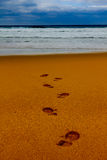 Footsteps in wet sand in a line towards the sea Stock Photo