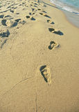 Footsteps. On a wild beach in Bulgaria Stock Photo