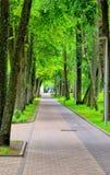 Footway в городе Стоковое Изображение