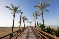 Footway e palmeiras de madeira na praia de Benicassim fotografia de stock