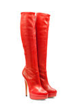 Footwear-107 fêmea Fotografia de Stock Royalty Free