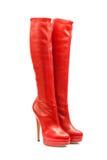 Footwear-107 femminile Fotografia Stock Libera da Diritti