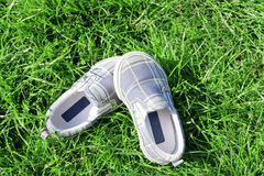 Footwear on a juicy grass Stock Photo