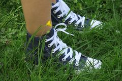 Footwear, White, Shoe, Grass Stock Photography