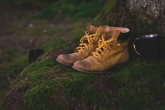 Footwear, Yellow, Grass, Shoe Royalty Free Stock Photos