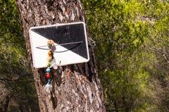 Fopspeen op een boom Stock Afbeelding