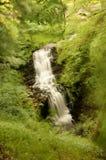 Força de Scalebar, caindo na ravina, Fotografia de Stock