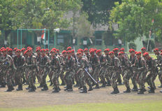 Forças armadas das forças especiais (Kopassus) de Indonésia imagem de stock royalty free