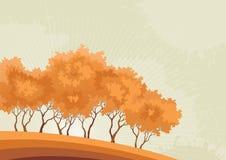 Forêt à la chute Photo stock