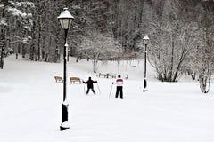 Forêt à Moscou après la chute de neige importante Images stock
