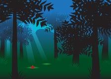 Forêt. illustration de vecteur