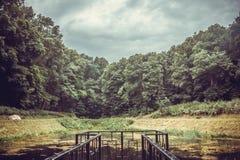 Forêt antique de chêne avant une tempête L'Ukraine, froid Yar de réservation La forêt la plus ancienne de l'Europe image stock