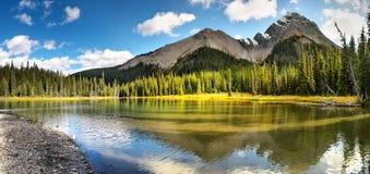 Forêt au-dessous de passage de montagne neigeux Images libres de droits