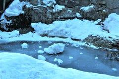 forêt avec la neige photos stock