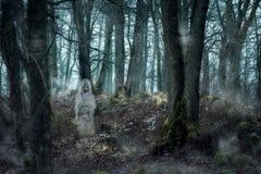 Forêt avec les fantômes photographie stock