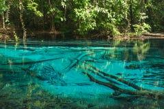 Forêt bleue de piscine en Thaïlande Images libres de droits