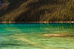 Forêt bleue transparente de pin de l'eau de lac de réflexion Photographie stock