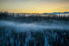 Forêt boréale - bas nuages Image libre de droits