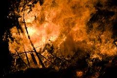 Forêt brûlante Photos libres de droits