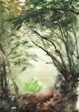 Forêt brumeuse Photographie stock libre de droits