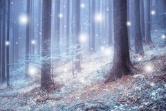 Forêt brumeuse bleue molle avec les chutes de neige abstraites Image stock
