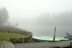 Forêt brumeuse pendant le matin photographie stock