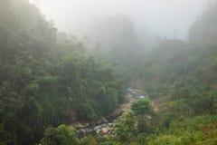 Forêt brumeuse sur la colline dans la forêt mountaFoggy sur la colline dans le secteur areainous montagneux images libres de droits