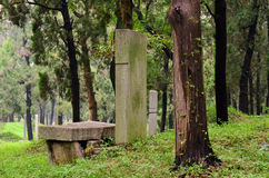 Forêt confucéenne, province de Qufu, Shandong, Chine Photos stock