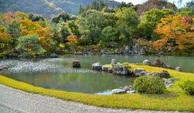 Forêt d'érable dans la saison d'automne Photos stock