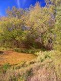 Forêt d'état de moraine de bouilloire de grange de La de lac Photographie stock libre de droits