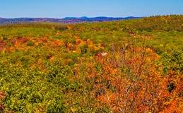 Forêt d'automne avec des collines dans la distance images libres de droits