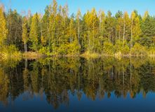 Forêt d'automne avec un beau lac dans le jour ensoleillé Colorfu lumineux photographie stock