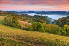 Forêt d'automne et village colorés de Holbav de brouillard, la Transylvanie, Roumanie, l'Europe images libres de droits