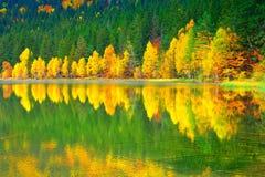 Forêt d'automne, lac ana de saint, Roumanie image stock