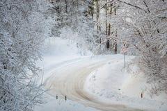 Forêt d'hiver image libre de droits