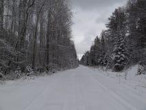 Forêt d'hiver avec la neige sur les Monts Oural Images libres de droits