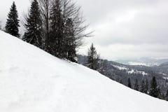 Forêt d'hiver dans le carpathien photos stock
