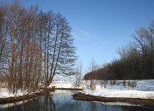 Forêt d'hiver de neige avec une petite rivière de non-congélation Photographie stock libre de droits