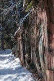 Forêt d'hiver, Russie, pins historiques, roche, neige, chemin, route images stock