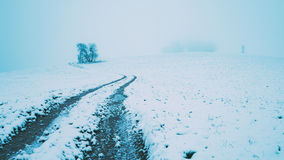 Forêt d'Odenwald avec la neige Photos stock
