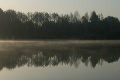 Forêt dans l'eau de miroir Image libre de droits