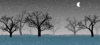 Forêt dans la brume foncée, neige, silhouettes d'arbres Photos libres de droits
