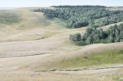 Forêt dans la cavité entre les collines Horizontal rural Photo libre de droits