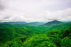 Forêt dans les montagnes Photo libre de droits