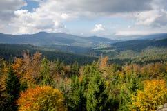 Forêt de Bavarois de Panoramma Photographie stock libre de droits