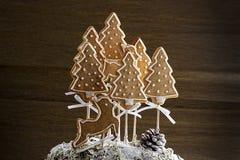 Forêt de biscuit de Noël Photographie stock libre de droits