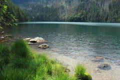 Forêt de Bohème - Cerne Jezero Photos stock