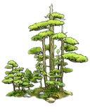 Forêt de bonzaies Photographie stock libre de droits
