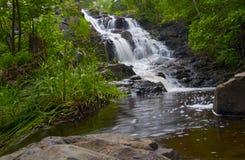 Forêt de cascade à écriture ligne par ligne et de regroupement au printemps Photographie stock libre de droits